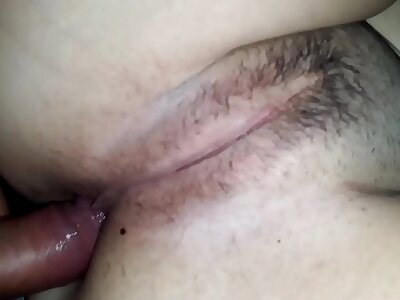 hairy-pussy